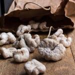 aborted entoloma mushrooms edible