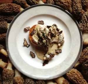 wild morel mushrooms with black truffles
