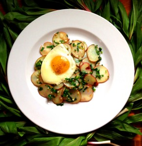 Baby Potatoes With Young Ramps And A Duck Egg