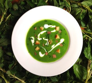 Spring Nettle soup, veal tongue, creme fraiche, croutons