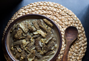 Boyd's 100 Dollar Morel Soup