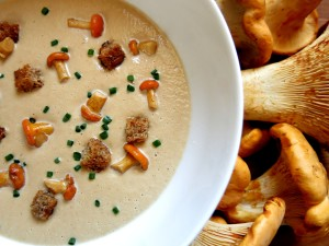 cream of chanterelle mushroom soup recipe
