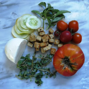 ingredients for purslane panzanella recipe with heirloom tomatoes and golden cucumbers
