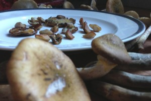 Sauteed Honey Mushroom Caps and Stems