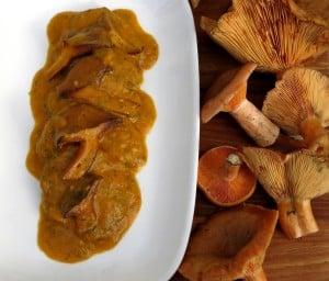fricando of saffron milkcap mushroomsrecipe