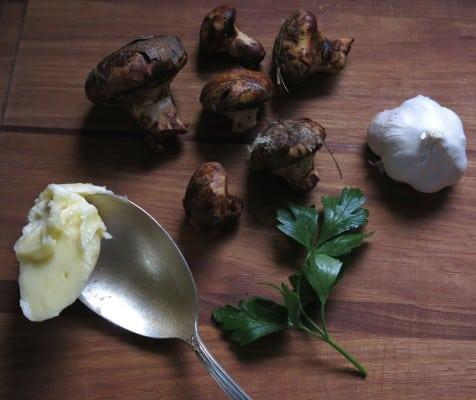 wild slippery jack mushroom recipe