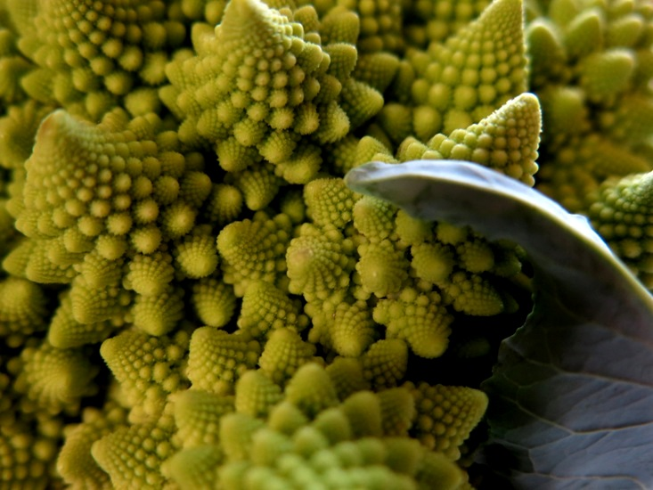 Romanesco broccoli this was another revelation shared with me years ago by my good friend andy lilja a veteran of the twin cities restaurant industry now chef at the mightylinksfo