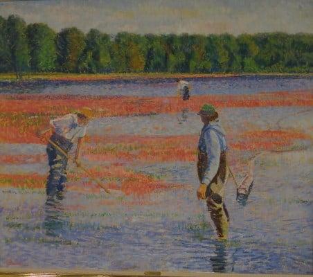 Men in a cranberry field