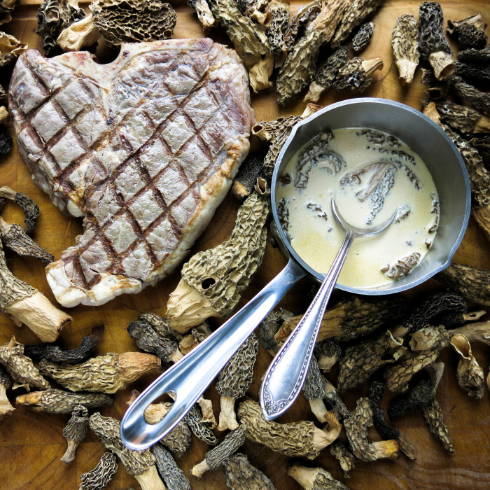 basic steak and morel sauce