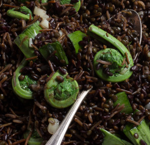 Black grain salad with ramps and fiddles._-8