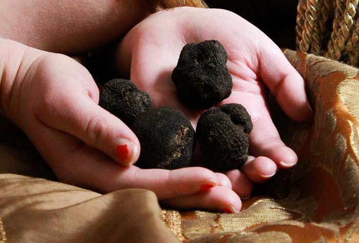 Photos of a woman with truffles-2