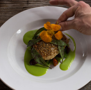 Plating Sunflower seed crusted whitefish with two lillies, peas and carrots