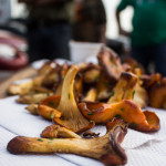 sauteed chanterelles with chives