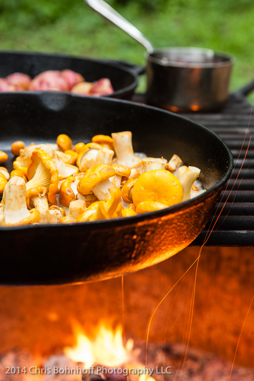 chanterelles cooking on a campfire