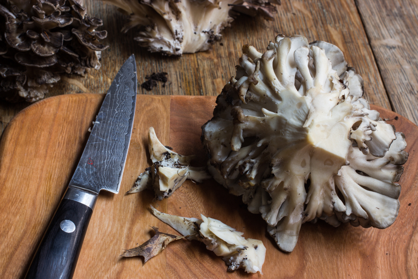 trimming a maitake hen of the woods for cooking whole