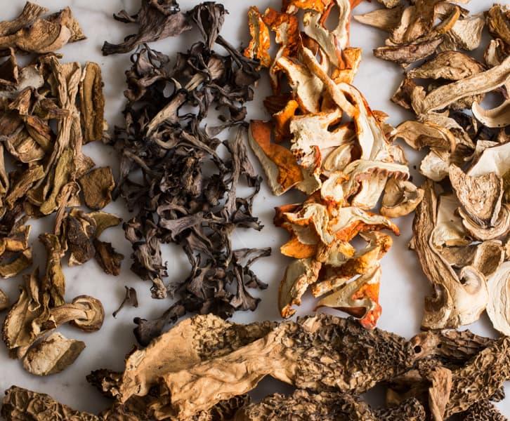 a branding image of mushrooms from the salt cellar st paul