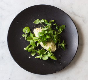 Greens That Survived Winter, With Celeriac And Cheese