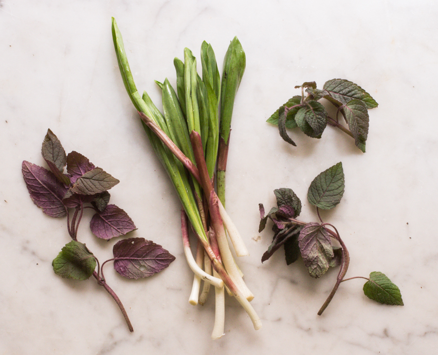 ramps and wild peppermint