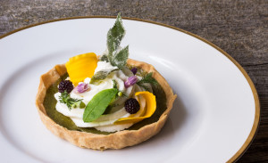 Knotweed Custard Tart, With Goat Cheese Mousse