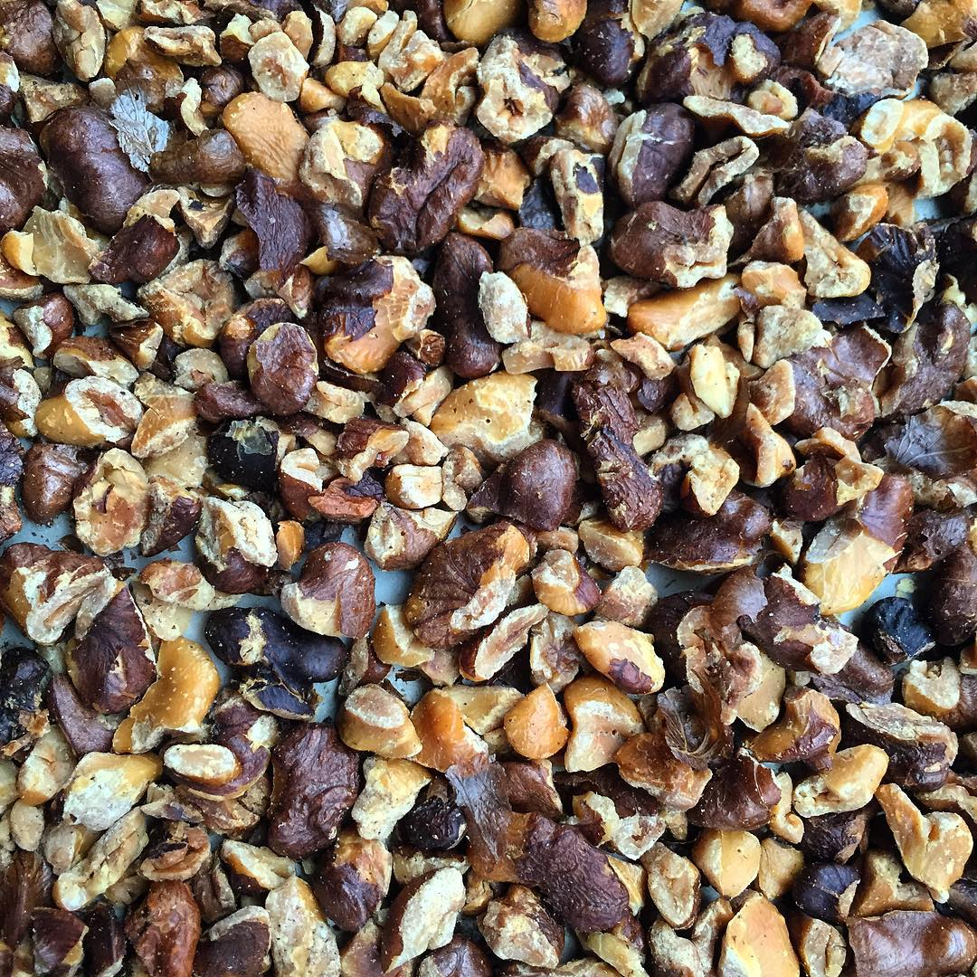 balck, walnut, black walnuts,