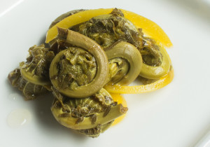 Bread and Butter Fiddlehead Pickles