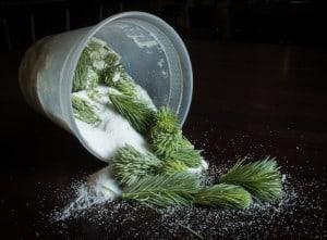 Spruce Tips in Sugar