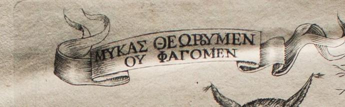 Fungorum a book of mushrooms_-2