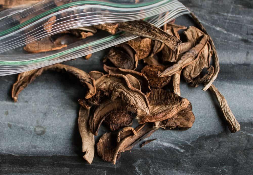 dried birch bolete mushrooms