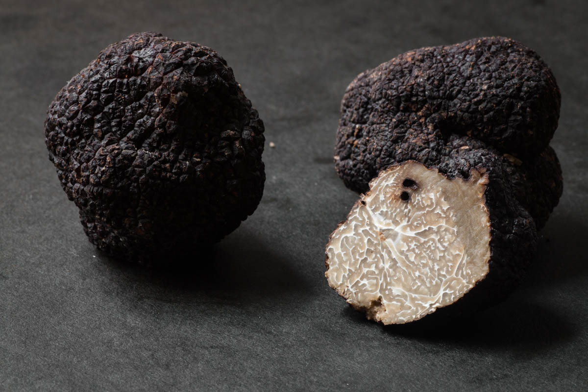 tuber melanosporum, black truffle, black winter truffle