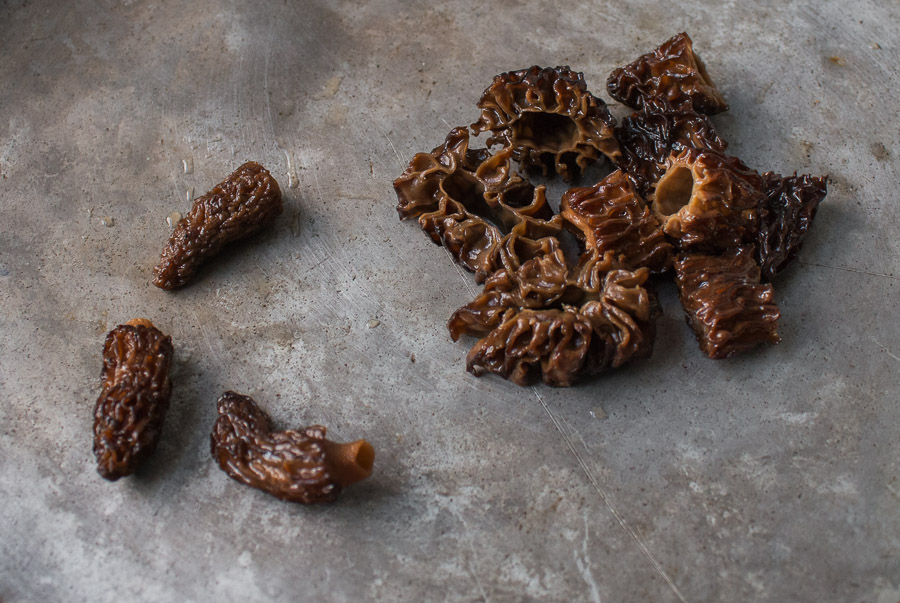 dried, re-hydrated morel, mushrooms,