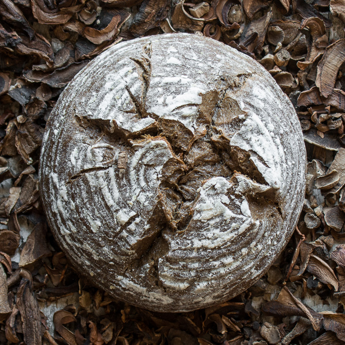 Naturally Leavened Wild Mushroom Sourdough