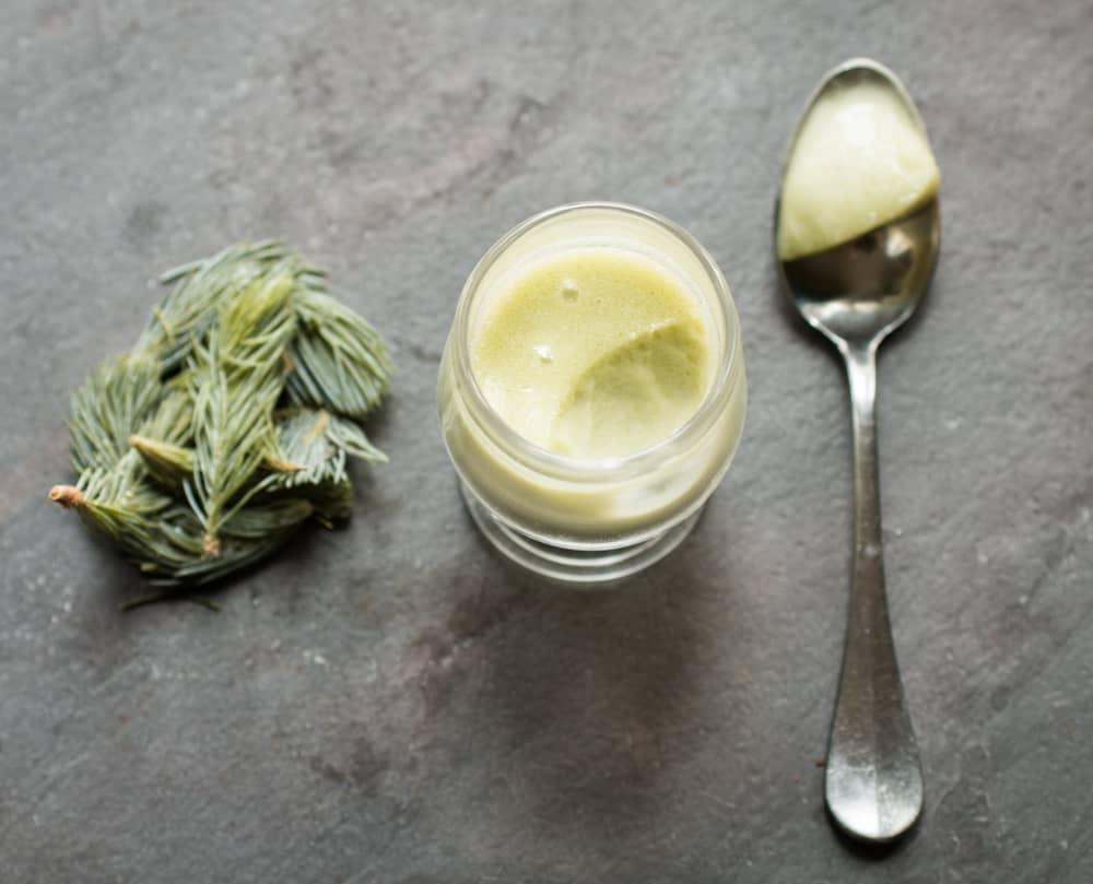 Spruce tip posset recipe