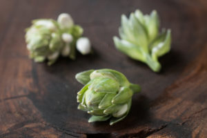 Edible hosta flower buds