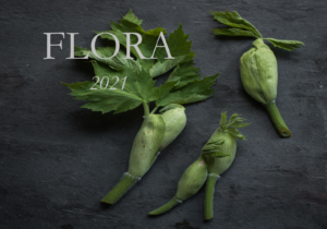 Flora Book, Sample Cover