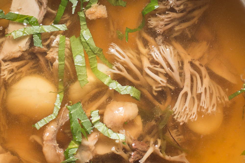 Crown coral mushrooms in broth with mitsuba and squirrel confit