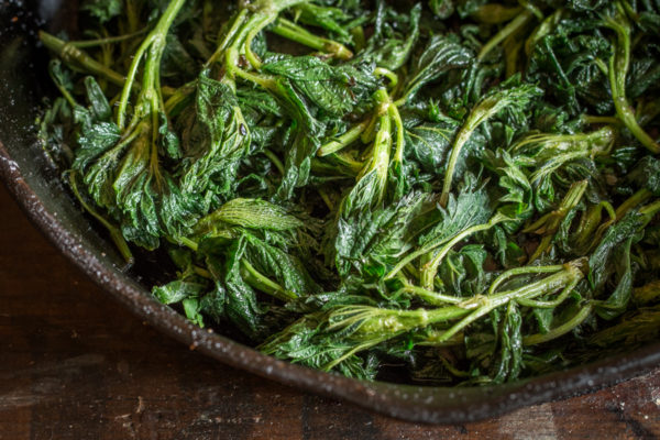 Butter glazed stinging nettles or wood nettles recipe