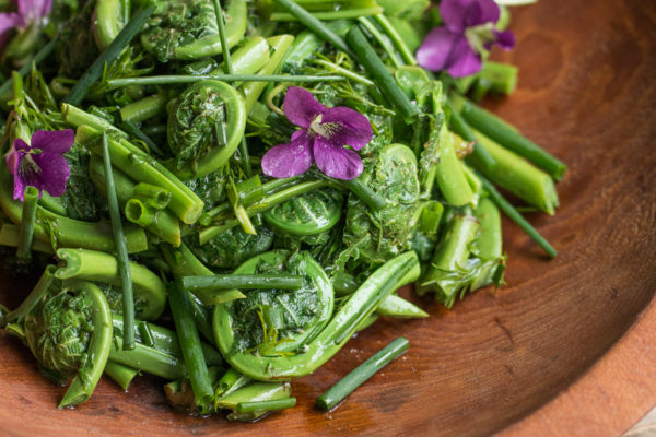 Fiddlehead salad recipe with olive oil lemon and herbs