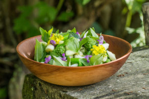Cattail and milkweed shoot salad recipe