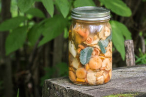 Salted wild mushrooms in brine recipe