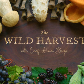 The Wild Harvest Show by Alan Bergo and Jesse Roesler Episode 5