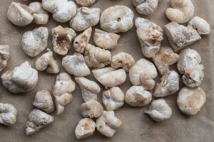 Cutting shrimp of the woods or aborted entoloma mushrooms for cooking