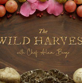 The Wild Harvest Show | Episode 6: Autumn