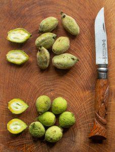 Green Black Walnuts and Butternuts (1)